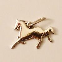 zodiac_cavallo